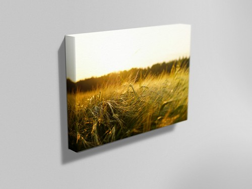 personalised canvas printing nottingham instaprint