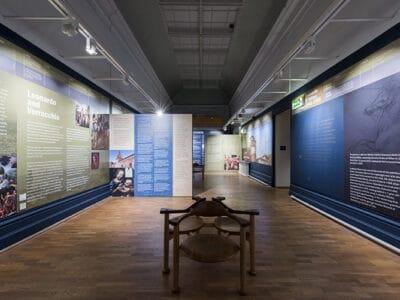 Exhibition Interpretation